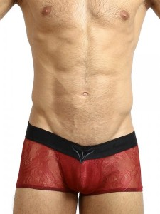 L'Homme Invisible V-Boxer